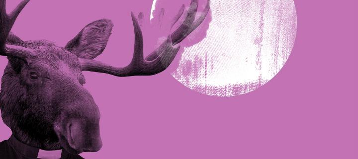 Ja Ja Ja – A Nordic Affair bringt auch im Mai musikalische Perlen nach Hamburg und Berlin
