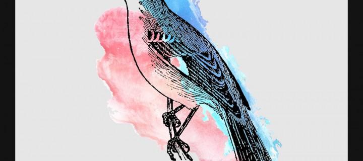 """Dayo veröffentlicht den aus der ViO-Werbung bekannten Song """"Mockingbirds"""" als Single!"""
